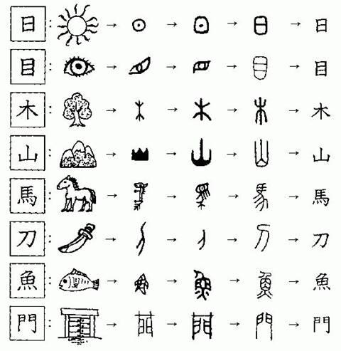 expressões básicas em chinês